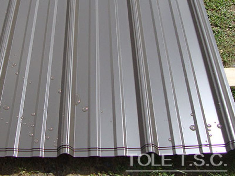 Revêtement de murs et toits en tôles - Tôle T.S.C.